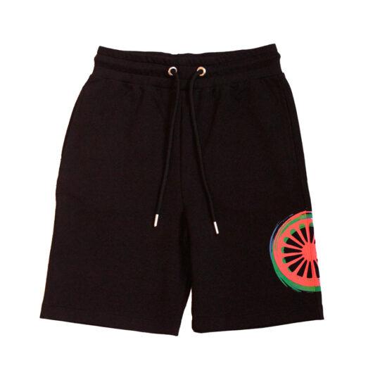 proud traveler rainbow shorts